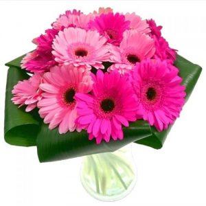 Gerbera Gem Bouquet
